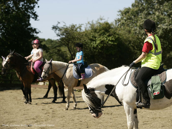 Burley Villa Equestrian Centre New Forest Attractions