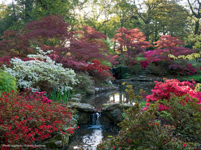 �� ���� ��� ������ !!!! exbury-gardens01.jpg
