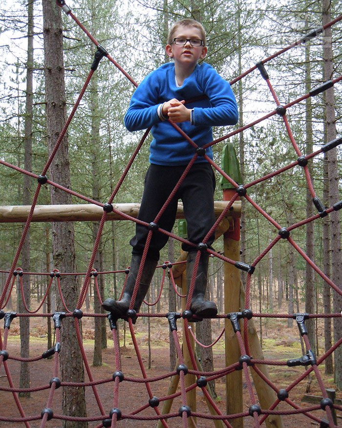 One of the Moors Valley climbing frames