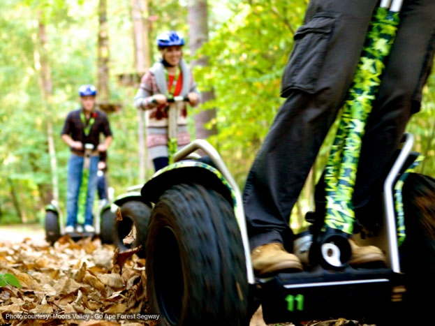 Moors Valley - Go Ape Forest segway