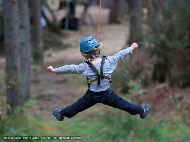 Moors Valley Go Ape - Tree Top Junior zip wire
