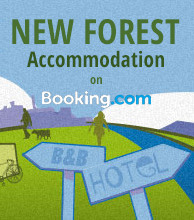 New Forest Accommodation on Booking com
