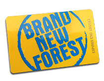 Brand New Forest Website Hosting Offer