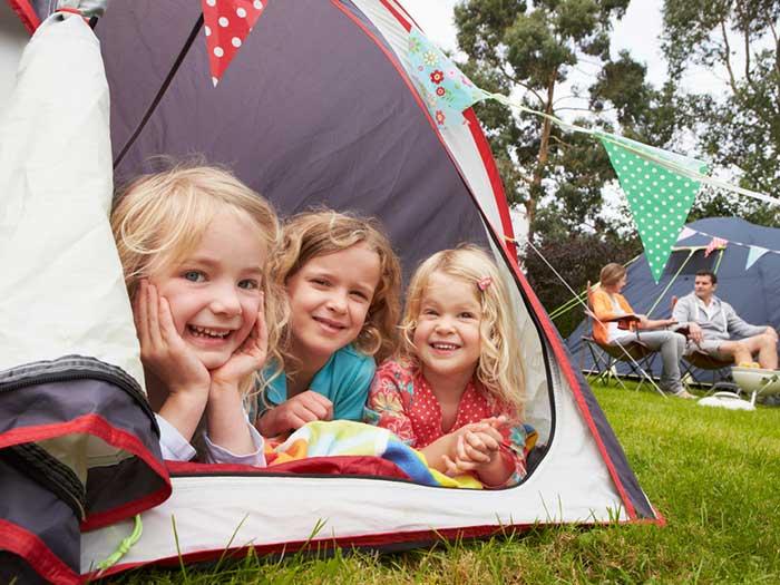 Harrys Field Campsite