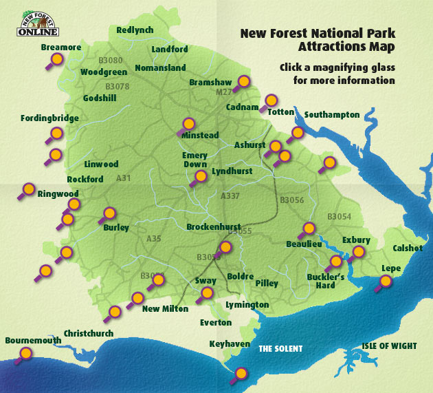 New Forest Attractions