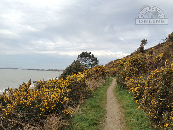 Coastal path near New Milton