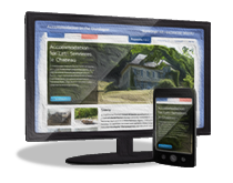 New Forest Web Design