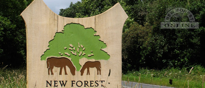 New Forest National Park Boundary