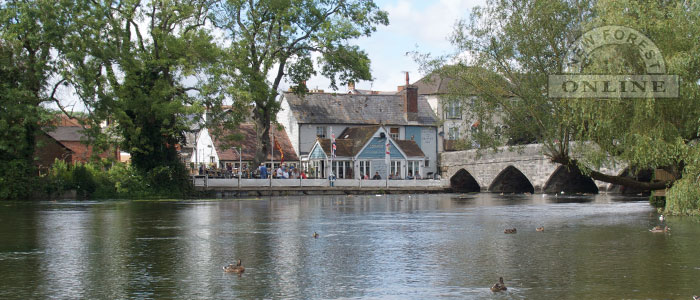 New Forest Towns and Villages